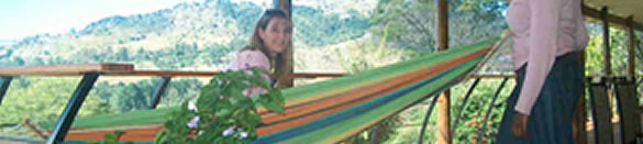 Image showing colourful hammock at Red Berry Bed and Breakfast In Mbabane Swaziland
